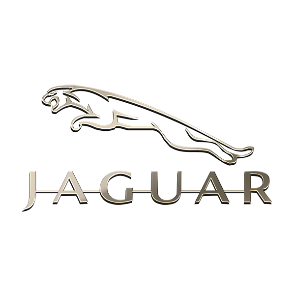 JAGUAR NICKEL STICKER